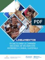 LINEAMIENTOS  TECNICOS DE CAMPAÑA DE VACUNACIÓN ANTIRRÁBICA CANINA 2019
