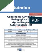 atividades auto reguladas - QUIMICA.pdf