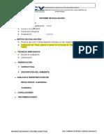 Modelo de informe  clima org (1).docx