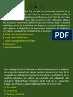 2. ARTROLOGIA DEL MIEMBRO SUPERIOR