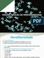 noesbsicasdehereditariedade-130108182956-phpapp02