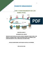COMPONENTE ORGANISMIC1.docx