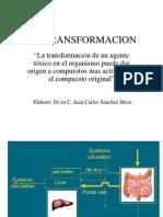 Biotransf..