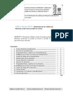 CAFEINA REPORTE (Autoguardado)