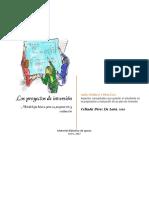 LOS PROYECTOS DE INVERSION-Celinda