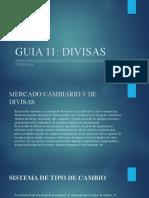GUIA 11
