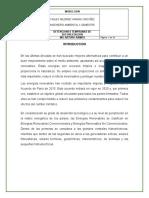 DETENCIONES TEMPRANAS DE DEFORESTACION.docx