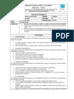 Guía Formato 7 (6).docx