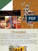 diversidad cultural en colombia (1)