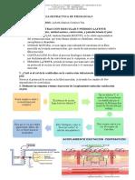 cuestionario fisio 5.docx
