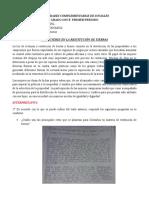 Actividad Nª2, Ciencias Sociales, Cristian Vanegas