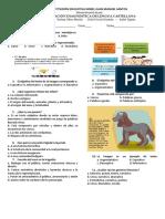 Pueba diagnostica de Lengua Castellana, 9,10 y11 (1).pdf.pdf