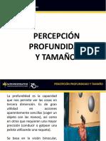 PERCEPCIÓN PROFUNDIDAD Y TAMAÑO