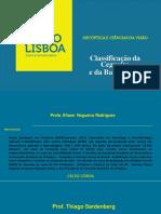 Ortoptica_Modulo_BaixaVisao_e_Cegueira_ElianeRodrigues.pdf