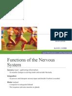 HLTAAP002  Nervous System