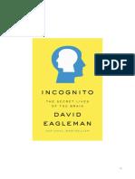 INCOGNITO Summary.pdf