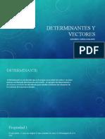 Determinantes y vectores