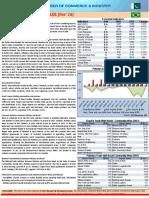 Brazil-Country-Wrap-Nov-18.pdf
