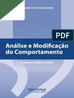 Kienen, N. Botomé, S.S. Análise e Modificação Do Comportamento