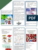 336515265-Triptico-Biotecnologia-Tradicional-y-Moderna
