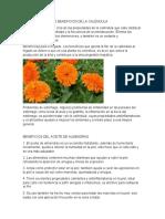 benefcios calendula plantas medicinales