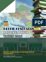 Profil kesehtan papua 2016