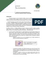 ap-2-celulas-del-sistema-inmunologico-y-fagocitosis