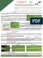 cannabis_medical_-cbd_et_schizophrenie_par_ufcm.pdf