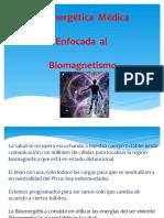 bioenergetica segundo nivel