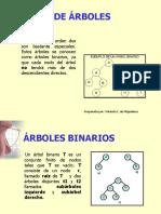 clasearbol2_b3478174daa2062649f217222a47aa01