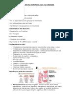 RESUMO DE ANATOMOFISIOLOGIA 1 - Sistema Muscular