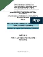 EEIA AE - Cap. XI. PASA - Construcción Sistema Riego El Tranque Grande - Culpina