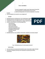 C6.Tusea convulsiva.docx