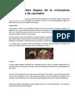 Les différentes étapes de la croissance du cannabis.docx