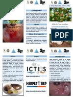 BIOLOGÍA DE LA REPRODUCCIÓN folleto