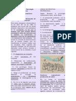Introducción a La Psicología Comunitaria. Resumen