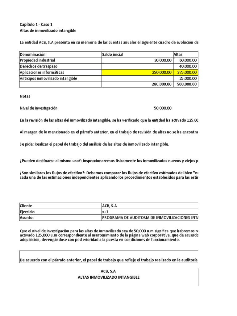 Dd156 Procedimientos De Auditoría Por áreas Amortización Negocio Activo Intangible