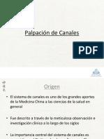 69 Palpación de Canales 2013