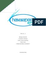 9a426395366902 Documents Similar To havaianas international