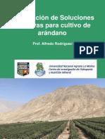 3--formulacion-arandanos-ica-2019