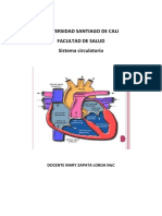cardiovascula y respiratorio 2019