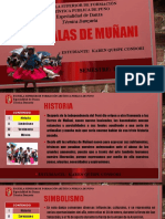 Wiphalas de muñani.pptx