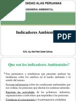11.-Indicadores Ambientales.ppt