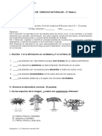 3° año -  Cs. Naturales   -   Prueba  Adaptada NEEP  -   La importancia de las plantas para los seres vivos