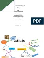 mapa mental y  conceptual cultura  sociologia