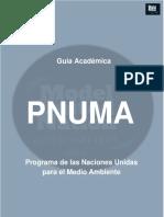 PNUMA.pdf