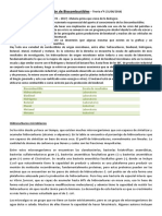 TEORIA 4.pdf