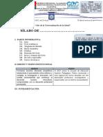 FORMATO DE SÍLABO 2020.doc