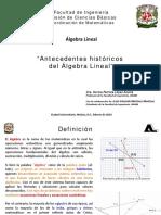 Algebra_Lineal_Antecedentes_historicos_d.pdf