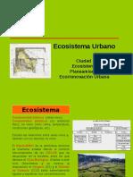 PPT 2_La ciudad como ecosistema y su complejidad.pdf